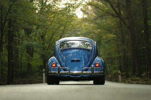 Beetle car driving along a woodland road